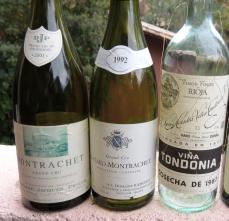 Grandes brancos da Borgonha e Rioja