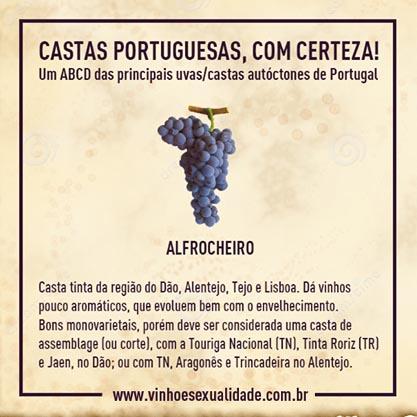 casta_alfrocheiro