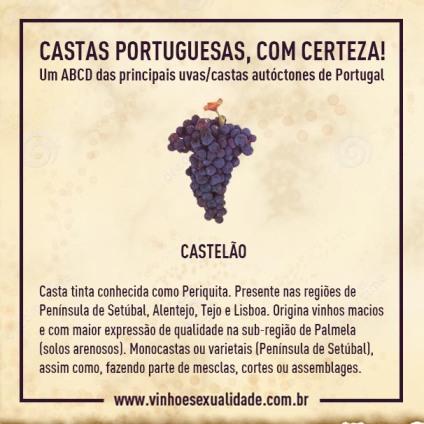 casta_castelao