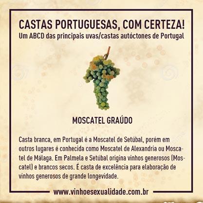 casta_moscatelgraudo