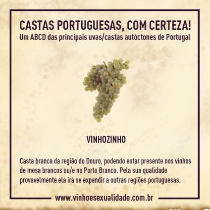 castas_vinhozinho